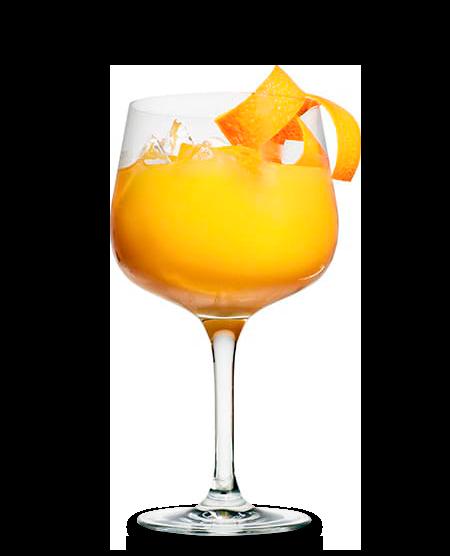 FINLANDIA Blackcurrant & Orange Juice