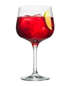 FINLANDIA Grapefruit & Cranberry Juice